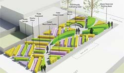 PHOTO: Native Seed Farm rendering