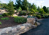 Dwarf Conifer Garden Highlights