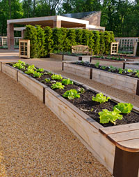 PHOTO: the Growing Garden vegetable beds