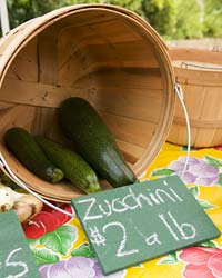 PHOTO: zucchini