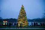 PHOTO: Tree Lighting