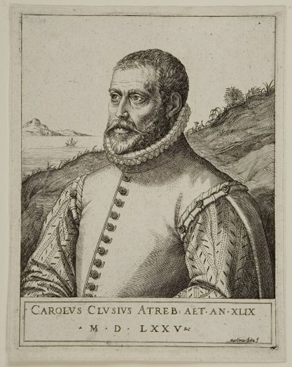 ILLUSTRATION: Portrait of Clusius.