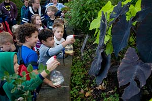 PHOTO: class in the Sensory Garden
