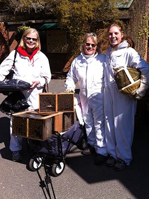 garden can bee attractive to pollinators chicago botanic ga