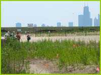 PHOTO: Montrose Beach restoratioin