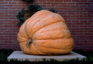 SCULPTURE: Pumpkin
