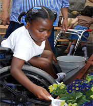 PHOTO: A girl in a wheelchair pots plants..