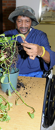 PHOTO: A veteran repotting plants.