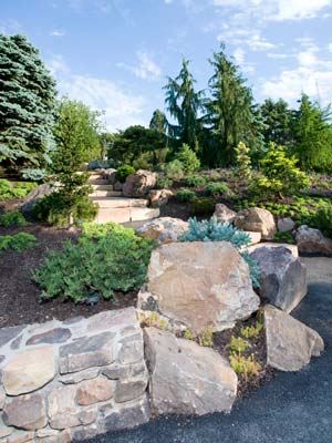PHOTO: Dwarf Conifer Garden
