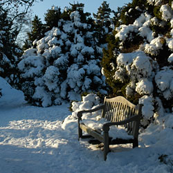 PHOTO: winter resting spot