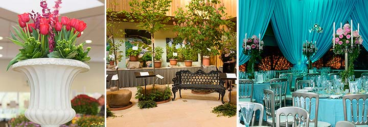 Woman's Board Events