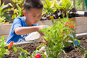PHOTO: A boy waters plants at the Children's Learning Center.