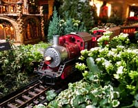 Chicago Botanic Garden Wonderland Express