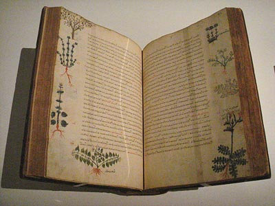 PHOTO: De Materia Medica (Byzantine version)