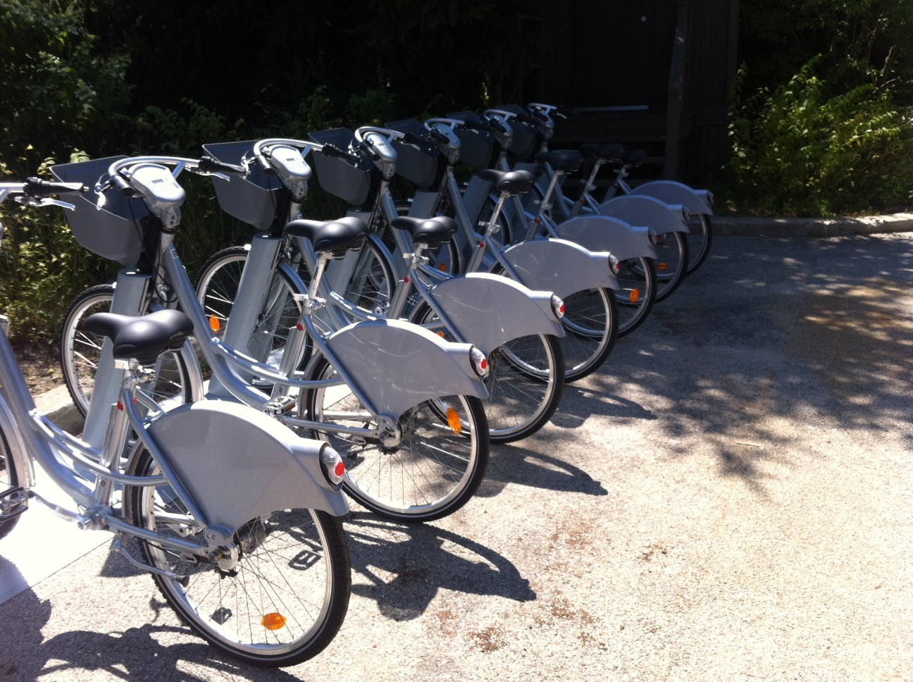 Rental bikes at the Garden.