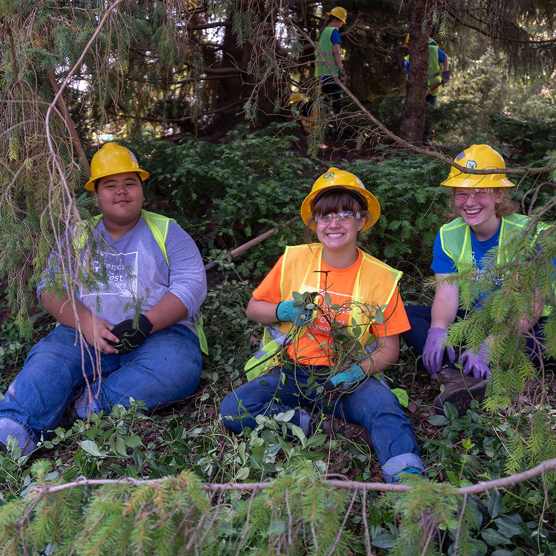 Conservation Corps Teens Working