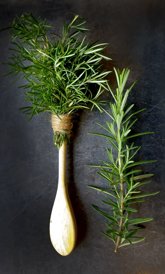 Herb Brushes for the Grill