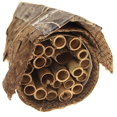 DIY Native Bee Home