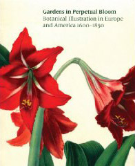 Gardens in Perpetual Bloom:  Botanical Illustration in Europe and America 1600–1