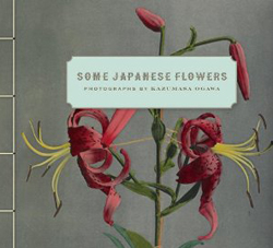 Some Japanese Flowers: Photographs by Kazumasa Ogawa