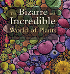 The Bizarre and Incredible World of Plants
