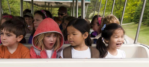 PHOTO: camp kids on tram