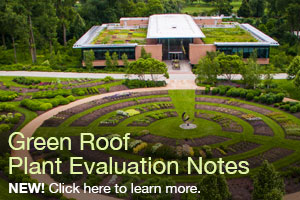 Download our Evaluation Notes for Green Roof Plants