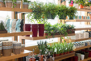 Garden Shop Celebration