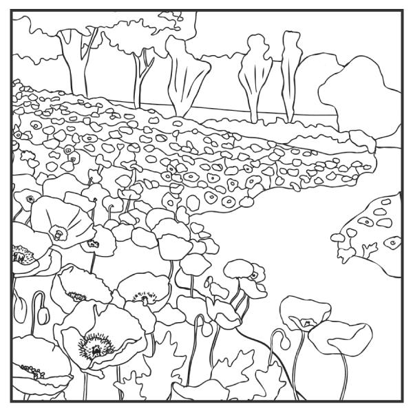 English Oak Meadow Poppies