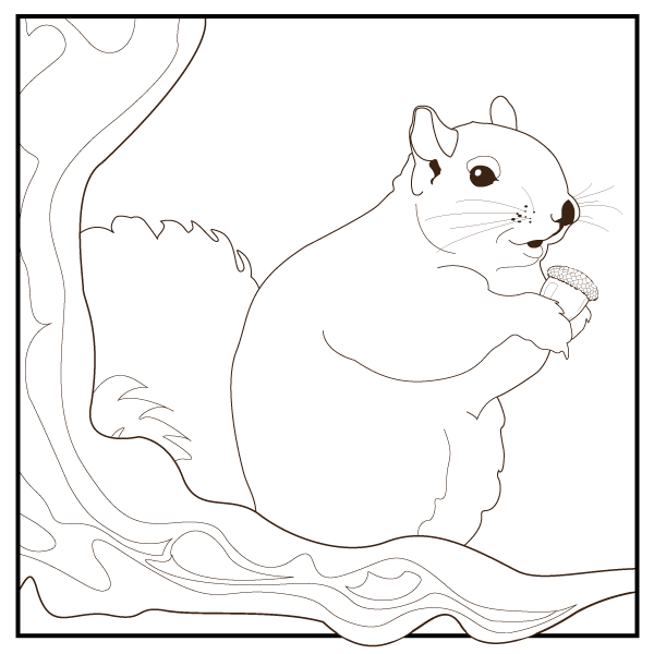 Download a Coloring Page