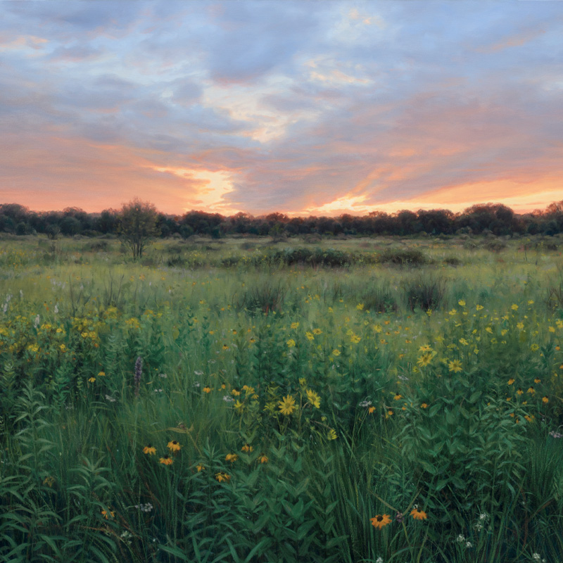 Paintings of Prairie Environments By Philip Juras - Chiwaukee Prairie