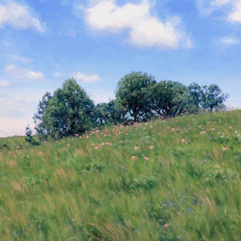 Paintings of Prairie Environments By Philip Juras - Doug's Knob
