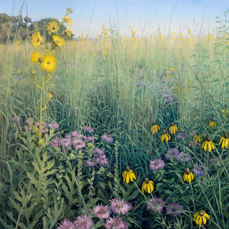 Paintings of Prairie Environments By Philip Juras - Poplar Creek Prairie