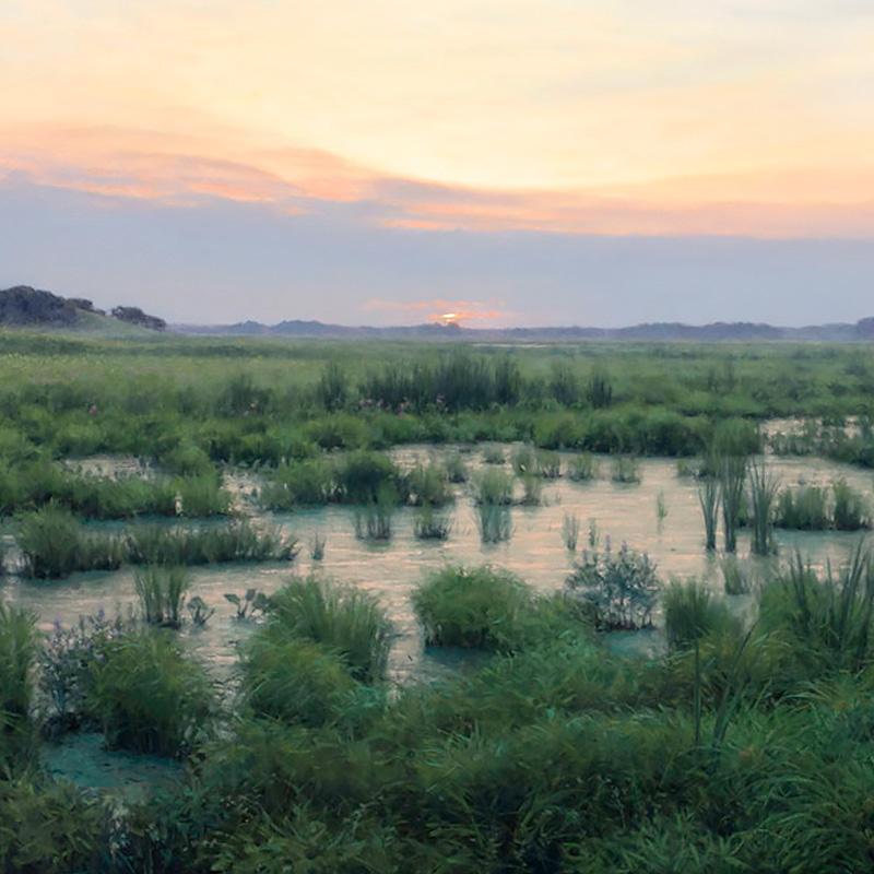 Paintings of Prairie Environments By Philip Juras - Spring Creek Valley