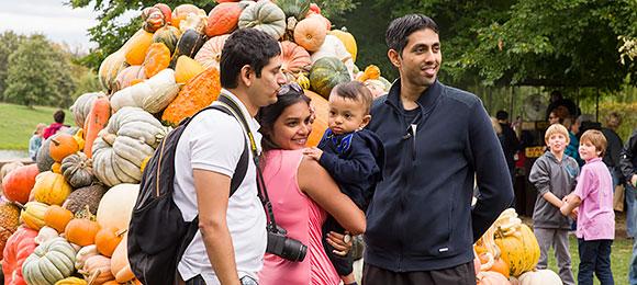 Fall Bulb Festival @ Chicago Botanic Garden | Glencoe | Illinois | United States