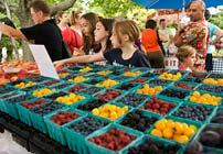 Chicago Botanic Garden Farmer's Market