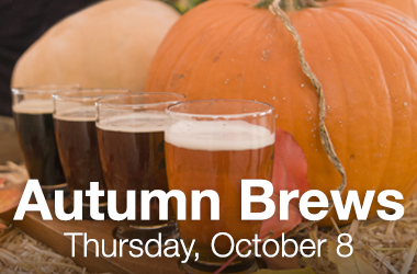 Autumn Brews