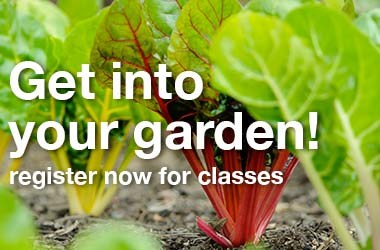 Register Now for Spring and Summer Classes