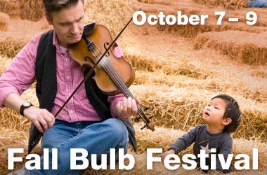 Fall Bulb Festival