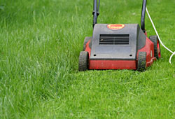 Do it yourself lawn care chicago botanic garden do it yourself lawn care solutioingenieria Gallery
