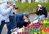 PHOTO: Monthly photo walk