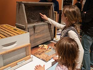 Children learn about pollinators at the Unearth Science festival