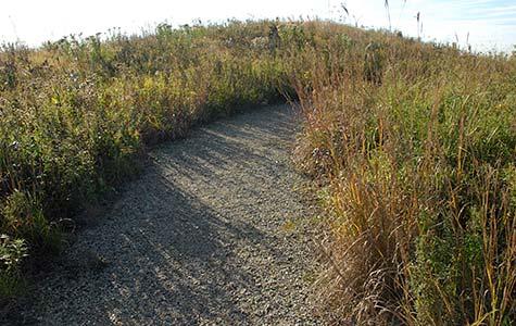 Gravel hill prairie
