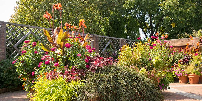 Enabling Garden in fall