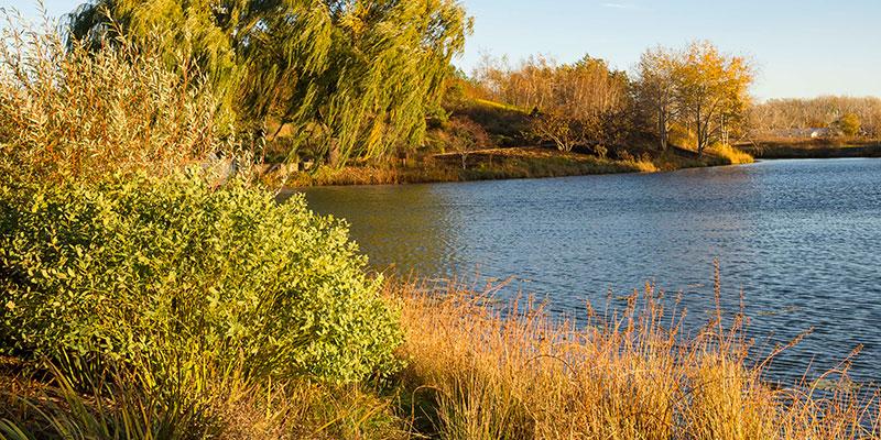 Lakeside Garden in fall