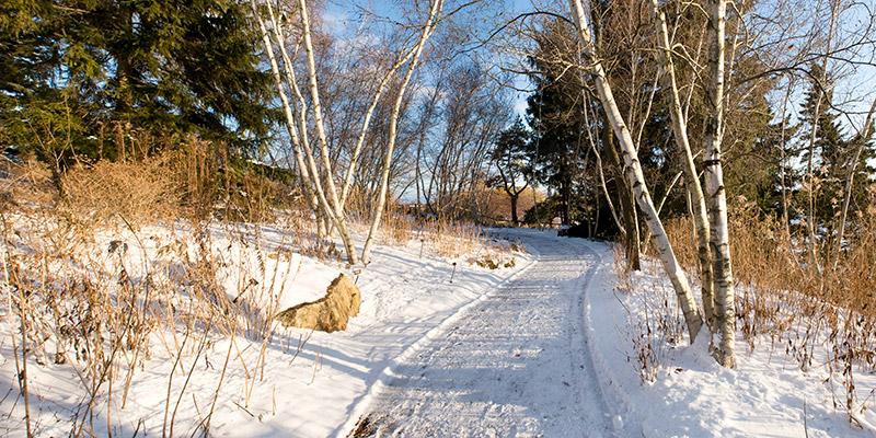 Sensory Winter