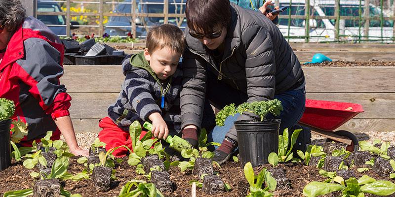 Children's Growing Garden Spring