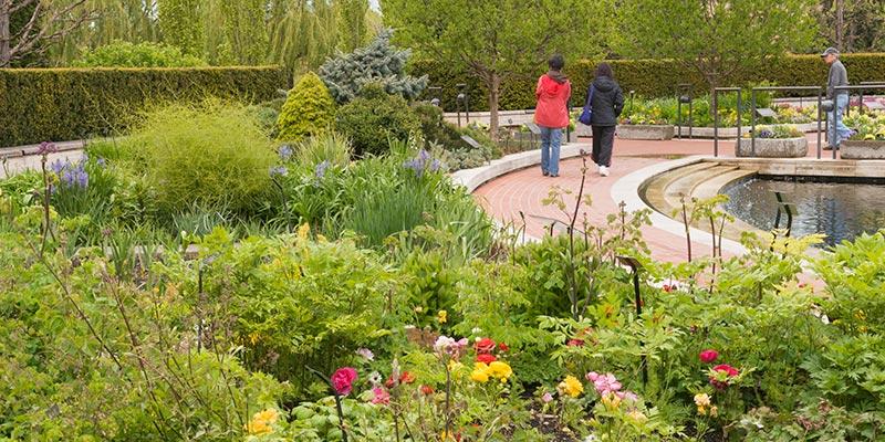 Heritage Garden in spring