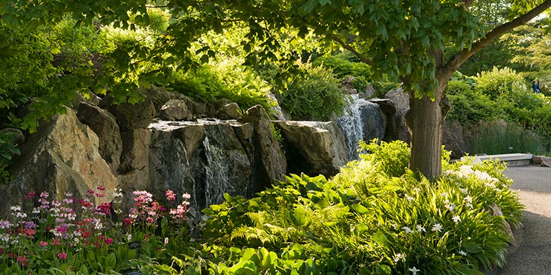 Waterfall Garden in spring