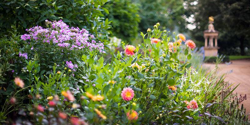 English Walled Garden in summer